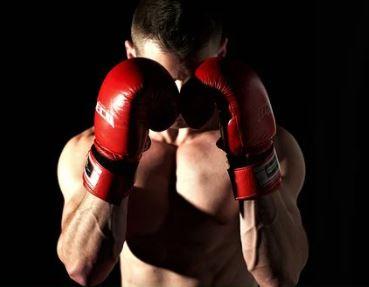 Boxer 981098765364742